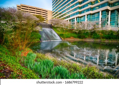 Atlanta, GA -- March 26, 2020: Front landscaping to the Randstad USA headquarters in Atlanta, GA, on March 26, 2020. The corporation specializes in recruiting and staffing nationwide.