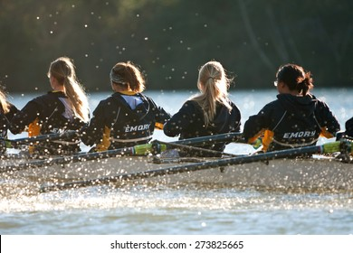 ATLANTA, GA - NOVEMBER 22:  The women's crew team from Emory University rows down the Chattahoochee River on a cold fall morning to warm up for an upcoming race on November 22, 2014 in Atlanta, GA.