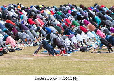 Atlanta, GA / USA - April 8, 2018:  Dozens of people do downward facing dog pose as they take part in a massive group yoga class in Piedmont Park on April 8, 2018 in Atlanta, GA.