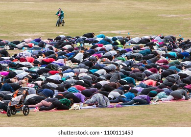 Atlanta, GA / USA - April 8, 2018:  Dozens of people do a yoga pose in unison as they take part in a massive group yoga class in Piedmont Park on April 8, 2018 in Atlanta, GA.
