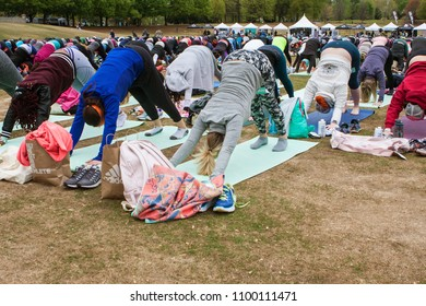 Atlanta, GA / USA - April 8, 2018:  Dozens of people do the downward facing dog pose in unison as they take part in a massive group yoga class in Piedmont Park on April 8, 2018 in Atlanta, GA.