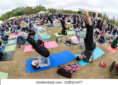 Atlanta, GA / USA - April 8, 2018:  Dozens of people do a yoga pose pointing their toes in the air, as they take part in a massive group yoga class in Piedmont Park on April 8, 2018 in Atlanta, GA.