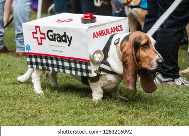 Atlanta, GA / USA - August 18 2018:  A cute basset hound wears an ambulance costume with flashing lights at Doggy Con, a dog costume contest on August 18, 2018 in Atlanta, GA.