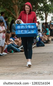 Atlanta, GA / USA - August 18, 2018:  A young woman dressed as Elliot from the movie E.T. carries her dog in a basket, dressed like the extraterrestrial, at Doggy Con in Atlanta.