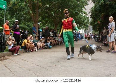 Atlanta, GA / USA - August 18 2018:  A man wearing a Robin costume walks his dog wearing a Batman costume in front of crowd of spectators at Doggy Con, a dog costume contest in Atlanta, GA.
