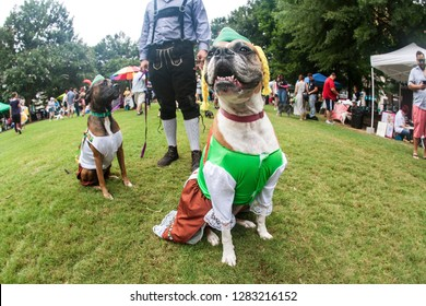 Atlanta, GA / USA - August 18 2018:  Two dogs wear bavarian costumes as their owner wears lederhosen, at Doggy Con, a dog costume contest in Woodruff Park on August 18, 2018 in Atlanta, GA.
