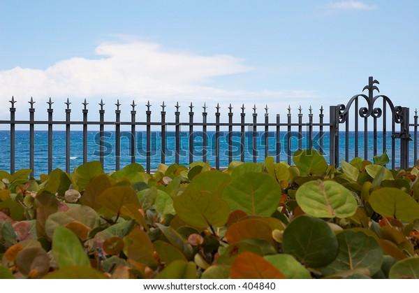 Atlantic Fence