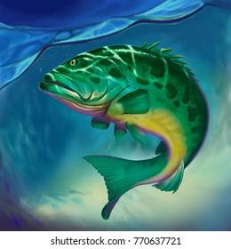 Atlantic goliath grouper big fish on water
