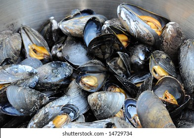 Atlantic Mussels