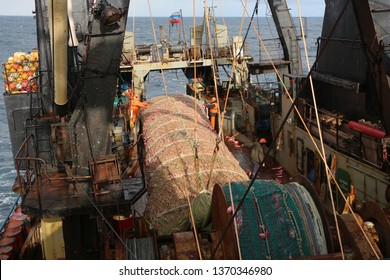 Atlantic Ocean, Irminger Sea-04.07.2019. Trawl full of red fish on the deck of a fishing boat