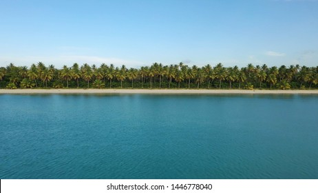 Atlantic sea shore. Caribbean sea Coastline of tropical palm island beach. Sky beach and sea. Palm grove on the ocean. Tropical jungle forest background landscape. Nature palm trees park by the sea.