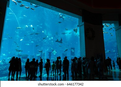 Atlantis The Palm, Dubai, UAE - April 2017: The crowd is looking at the giant fish tank in The Lost Chambers Aquarium at Altantis The Palm hotel in Dubai.