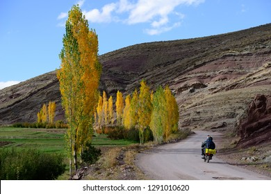 Atlas mountains, Morocco - October 23, 2018: Biker riding a minibike on a road high in mountains in a oasis with yeloow trees and green fields
