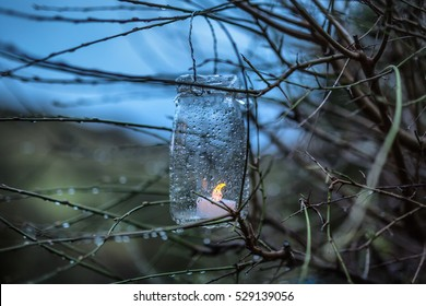 Atmospheric burning candle flame inside a glass jar hanging from a tree branch on a cold night in Winter