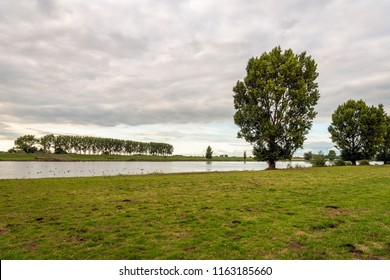 Atmospheric landscape with the Dutch river Bergsche Maas near the village Sprang-Capelle. It is at the end of a beautiful summer day. The sky is colorful and cloudy. Many waterfowl swim in the river.