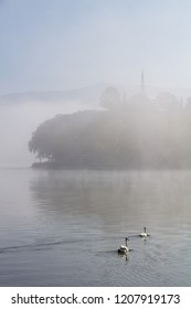 Atmospheric scene of two swans on Lake Pamvotis on a misty morning in Ioannina, Greece, with Aslan Pasha mosque in the background