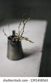 Atmospheric still life of a vintage metal vase with sprouted plum tree branches on a white kitchen table, situated before the window natural light. Selective focus, slow living concept, blog style