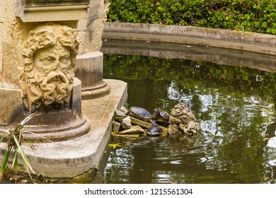 Attard, Malta. Waterfowl turtles in the fountain in the gardens of the Palace of San Anton