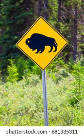 An attention bison of roadway for the next 315 km warning sign.
