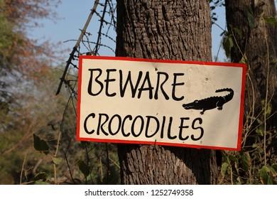 Attention Danger Crocodiles