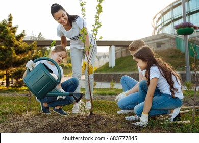 Attentive little girl pouring young tree