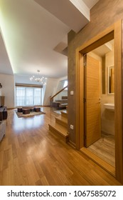 Attic, loft aprtment interior, open plan, living room and bathroom view