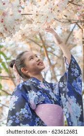 Attractive Asian girl wearing kimono looking cherry blossoms in the garden