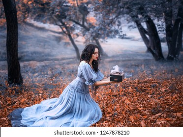 attractive brunette girl sits in a dark forest on fallen autumn orazhevyh leaves, dressed in a gray vintage dress with bare shoulders, holding in her hands an open Pandora's box full of evil, misery