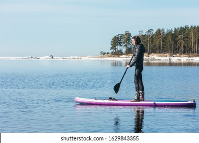 Attractive caucasian woman in black wetsuit paddle on SUP board with an oar. Female floating on stand up paddle board in the sea. In the background trees. Winter season and active leisure concept.