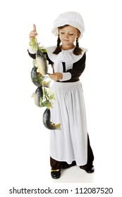 An attractive elementary Pilgrim girl admiring a string of fish, a likely food served at the first Thanksgiving.   On a white background.