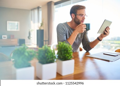 Attractive european architect busy enjoying his morning cup of coffee while looking at his latest project on his electronic tablet while seated at a lovely wooden dining table in his modern mansion.