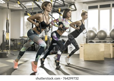 Attractive girls are training with straps in the gym on the windows background. They are wearing the multicolored sportswear: pants, tops, sleeveless and sneakers. Horizontal.