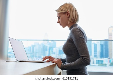 Attractive good looking blonde female freelancer working online with marketing project sitting in coworking space, young businesswoman making distant work using laptop computer while sitting in office