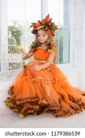 Attractive little girl wearing autumn costume posing near the window