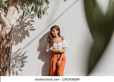 Attractive long-haired brunette woman in stylish culottes and white top posing against white wall and olive tree