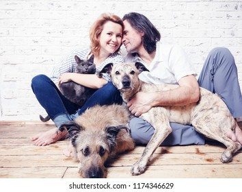 Attractive man and his young wife with pets, two dogs and a cat, a family portrait