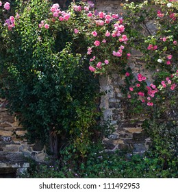attractive old and overgrown stone wall with a hidden window and climbing roses