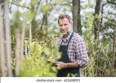 Attractive senior working in a garden and using a tablet