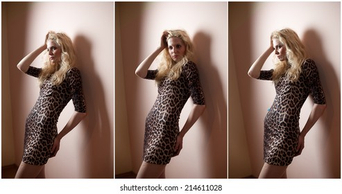 4616a7f14e Attractive sexy blonde in animal print tight fit short dress posing  provocatively indoor. Portrait of