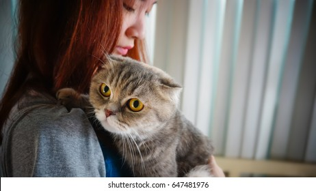 attractive teenager girl with Scottish Fold cat, with text area, very shallow depth of field. Processed with vintage style.