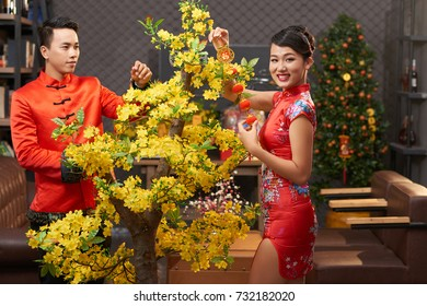 Attractive Vietnamese woman wearing traditional costume Ao Dai posing for photography while decorating Ochna tree with her handsome boyfriend, interior of cozy living room on background