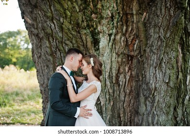 Attractive wedding couple hugging next to an old tree in the countryside.