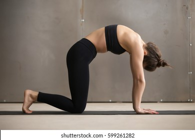 Attractive woman in black sportswear practicing yoga, standing in therapeutic asana paired with Cow Pose on the inhale, Cat exercise, Marjaryasana, working out, urban style grey studio, full length