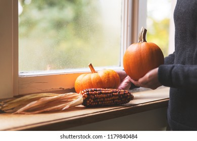 attractive woman is decorating a window with pumpkins and corncob, autumn window decoration