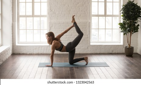 Attractive woman in grey sportswear, bra and leggings practicing yoga, standing in tiger pose, beautiful girl doing Bird dog exercise at home or in yoga studio with white walls background