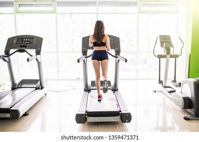 Attractive woman running on treadmill in sport gym. Sport life and sport equipment. Back view.
