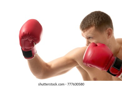 Attractive young boxer on white background