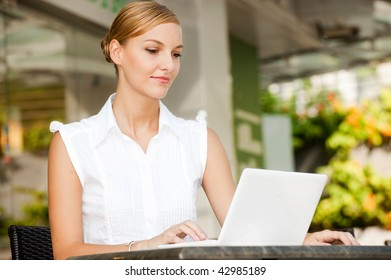 An attractive young businesswoman using a laptop at a cafe