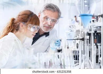 Attractive young female scientist and her senior male supervisor looking at the cell colony grown in the petri dish in the life science research laboratory.