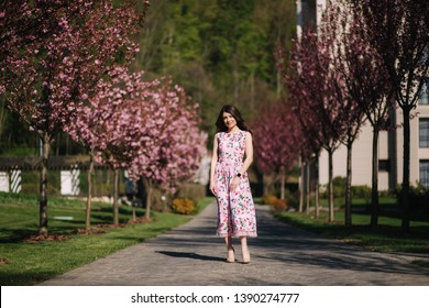 Attractive young girl walkin in the park neat the pink tree. Sakura tree